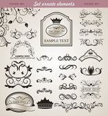 Set floral ornate design elements (3) — Stock Vector