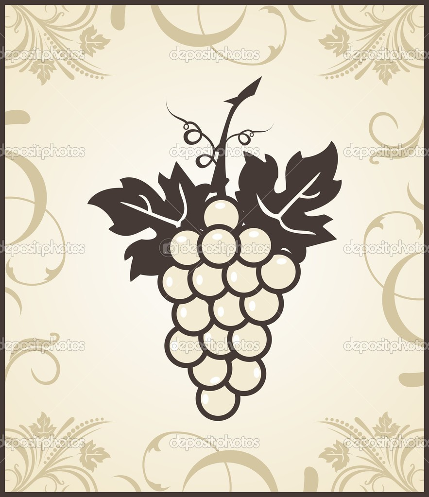 Illustration retro engraving of grapevine - vector — Stock Vector #5862269