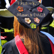 College Graduation. — Stock Photo
