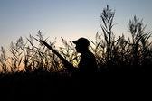 El cazador — Foto de Stock