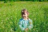 Little girl on weadow — Stock Photo