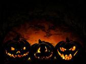 Halloween pumpkin looking at window — Stock Photo