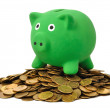 Money and Piggy Bank — Stock Photo #6711218