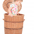 Little girl in wicker container — Stock Photo #6559356
