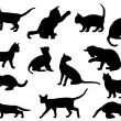 Silhouettes of cats — Stock Vector #5399008