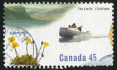 Postage stamp — Photo
