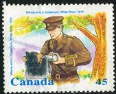 Poststamp — 图库照片