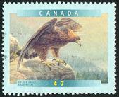 Poststamp — Zdjęcie stockowe