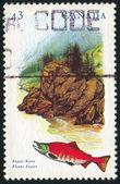 Postage stamp — Стоковое фото
