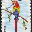 Postage stamp — Stock Photo #5965203