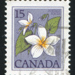 Postage stamp — Stock Photo #6017469