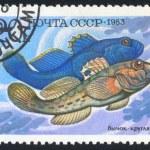 Poststamp fish — Stock Photo