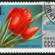 Poststamp flower — Stock Photo #6084818