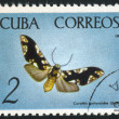 Poststamp butterfly — Stock Photo #6084918