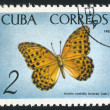 Poststamp butterfly — Stock Photo #6085054