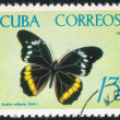 Poststamp butterfly — Stock Photo #6085057