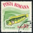 Poststamp fish — Stock Photo