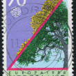 Postage stamp — Stock Photo #6085630