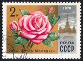 Poststamp çiçek — Stok fotoğraf