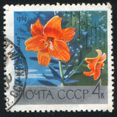 Poststamp blume — Stockfoto