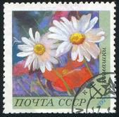 Poststamp bloem — Stockfoto