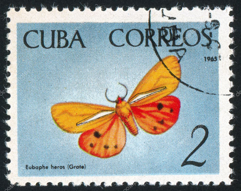CUBA - CIRCA 1965: stamp printed by Cuba, shows butterfly, circa 1965 — Stock Photo #6084848