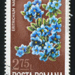 Stock Photo: Poststamp