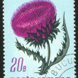 Poststamp Thistle — Stock Photo #6201832