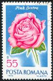 Poststamp Rose — Stock Photo