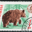 Poststamp bear — Stock Photo