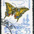 Poststamp butterfly — Stock Photo