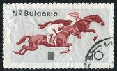 Jízdy na koni — Stock fotografie