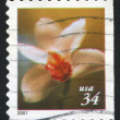 Stamp flower — Stock Photo