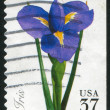 Stock Photo: Stamp Iris