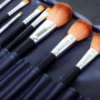 Royalty-Free Stock Photo: Makeup brush set