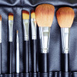makeup brush set — Stock Photo #5971820