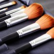 makeup brush set — Stock Photo