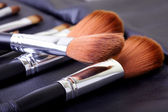 Cosmetic brush set — Stock Photo