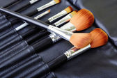 Makeup brush set — Stock Photo