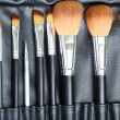 makeup brush — Stock Photo