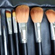 Makeup brush — Stock Photo #6285162