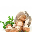 Mushrooms with parsley — Stock Photo