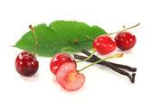 Cherries with vanilla — Stock Photo