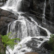 Stock Photo: Baker falls, Ceylon
