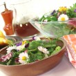 Wild herb salad with goat cheese — Stock Photo