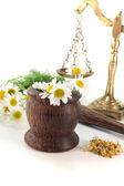 Chamomile flowers with mortar and scales — Stock Photo
