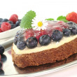 Forest fruit tart — Stockfoto
