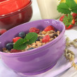 Fruit Muesli — Stock Photo #5419320