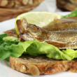 Stock Photo: Sprats
