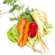 Постер, плакат: Carrots radishes and parsnip with green lettuce isolated on wh